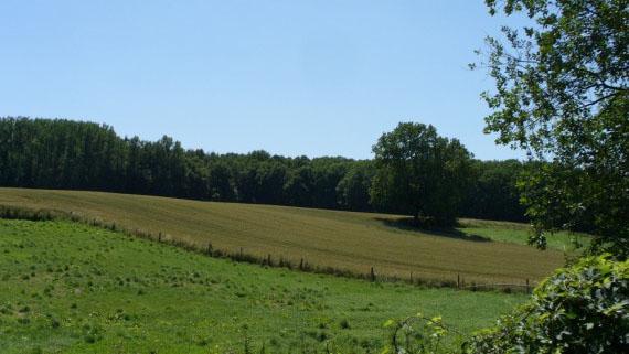 Cliquez ici pour en savoir plus sur La province du Brabant Wallon